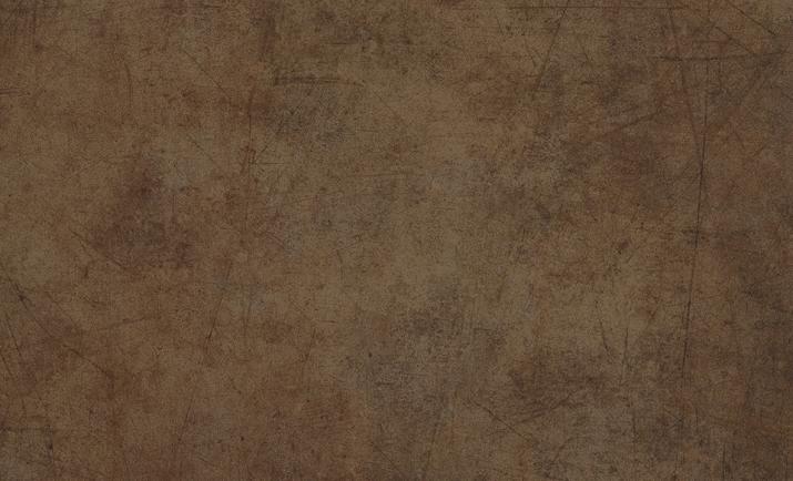 Immagini 1589